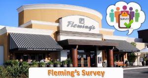 Fleming's Survey
