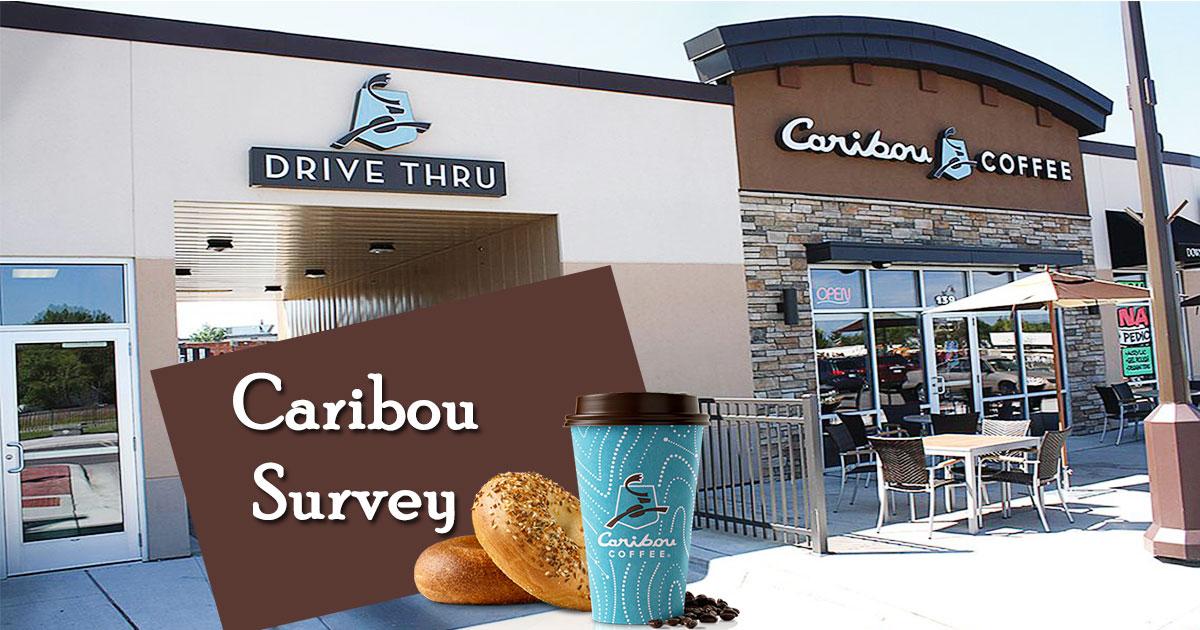 Caribou Survey image