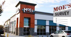 Moe's Survey image