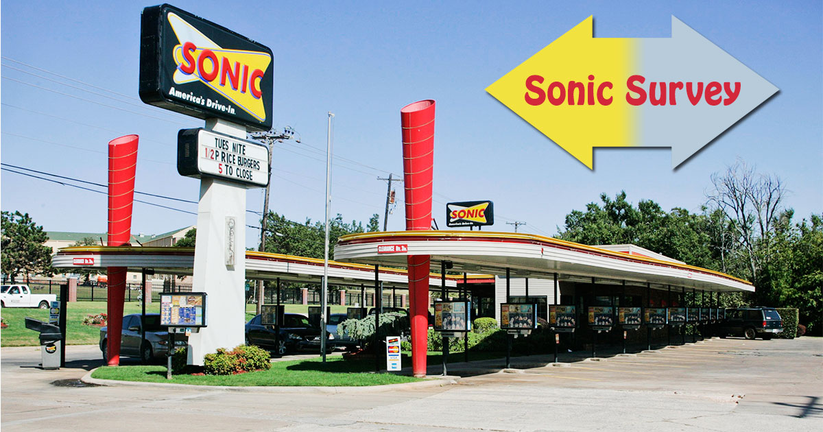 Sonic Survey image