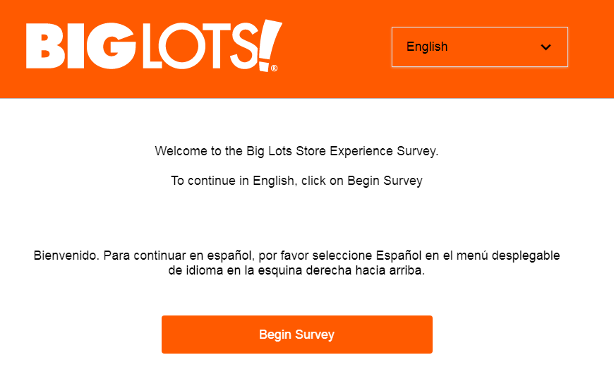 big lots customer survey image
